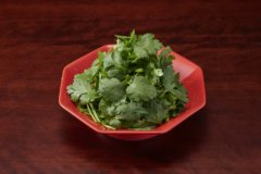 Coriander-Only Salad